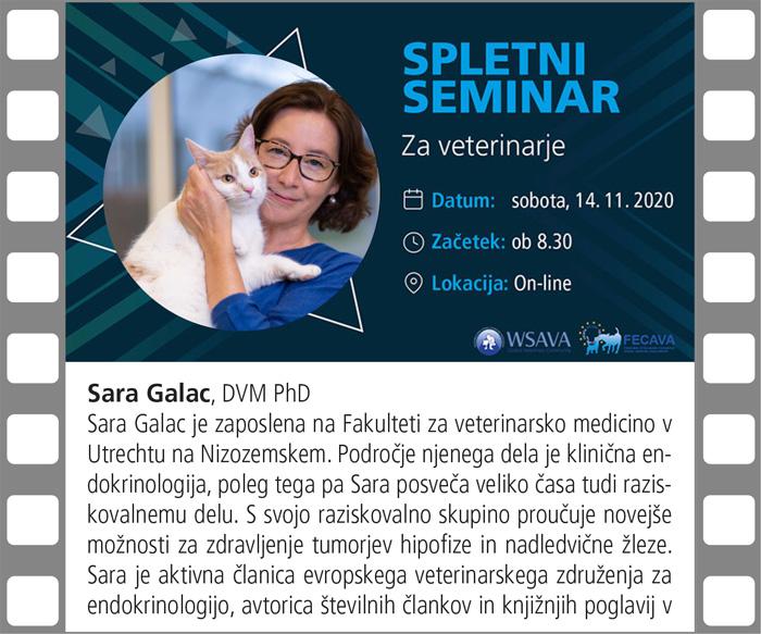 Spletni seminar SZVMŽ